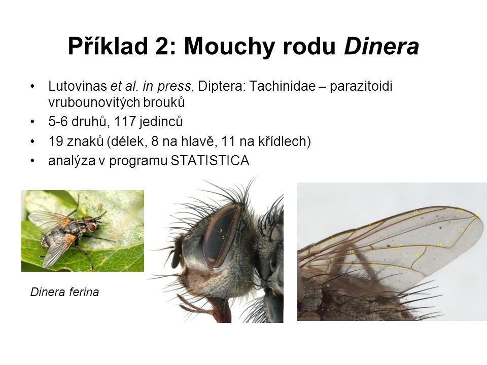 Příklad 2: Mouchy rodu Dinera Lutovinas et al. in press, Diptera: Tachinidae – parazitoidi vrubounovitých brouků 5-6 druhů, 117 jedinců 19 znaků (déle
