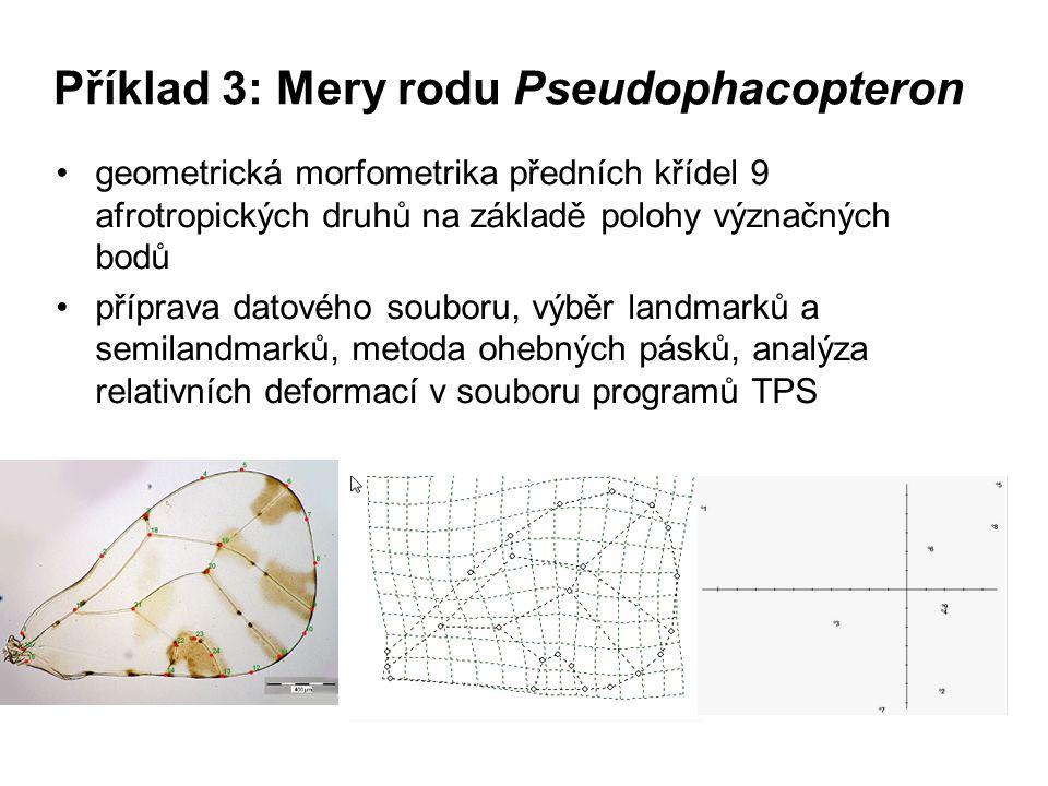Příklad 3: Mery rodu Pseudophacopteron geometrická morfometrika předních křídel 9 afrotropických druhů na základě polohy význačných bodů příprava dato