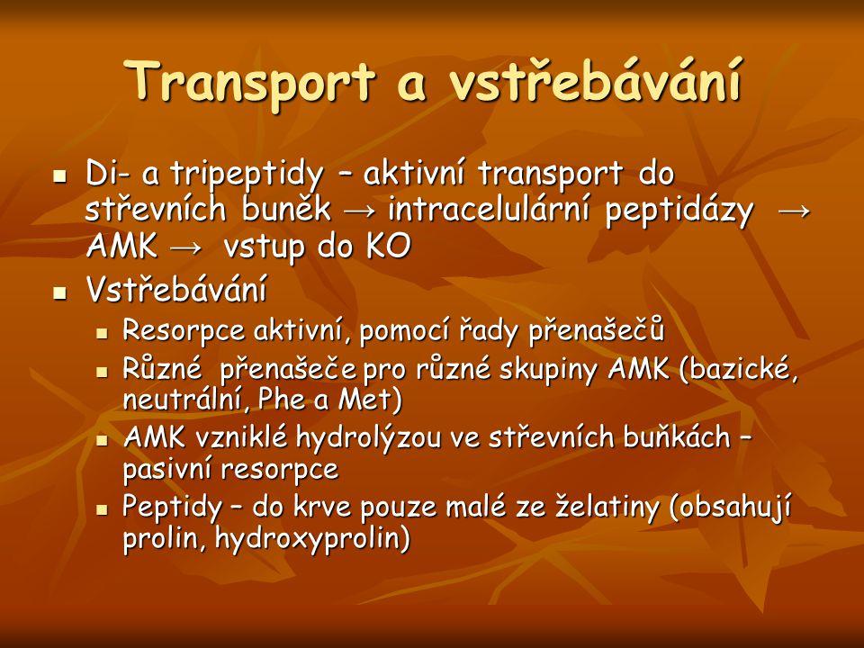 Transport a vstřebávání Di- a tripeptidy – aktivní transport do střevních buněk → intracelulární peptidázy → AMK → vstup do KO Di- a tripeptidy – akti