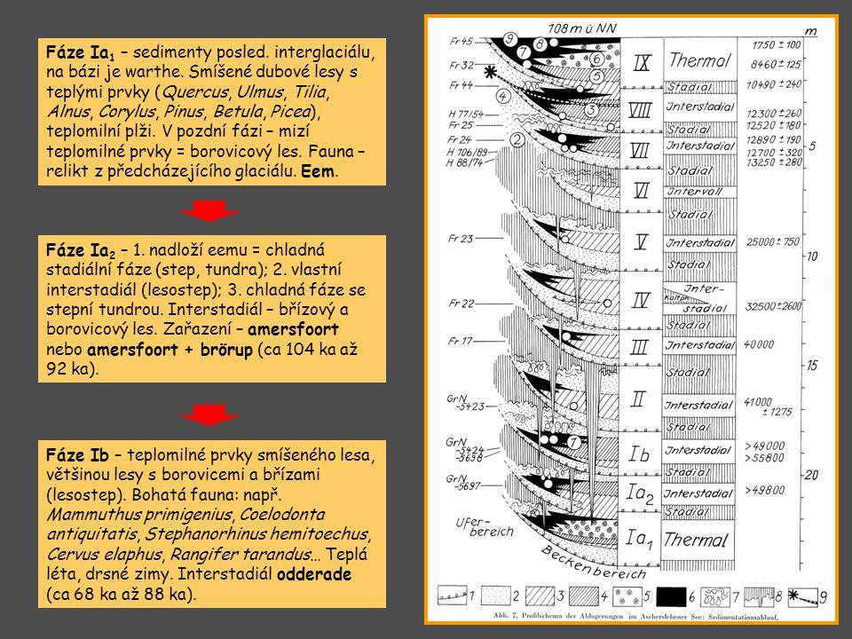 Fáze Ia 1 – sedimenty posled. interglaciálu, na bázi je warthe. Smíšené dubové lesy s teplými prvky (Quercus, Ulmus, Tilia, Alnus, Corylus, Pinus, Bet