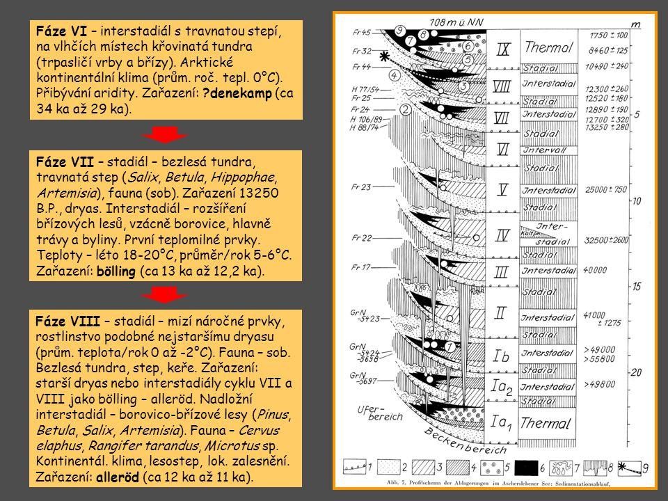 Fáze VI – interstadiál s travnatou stepí, na vlhčích místech křovinatá tundra (trpasličí vrby a břízy). Arktické kontinentální klima (prům. roč. tepl.