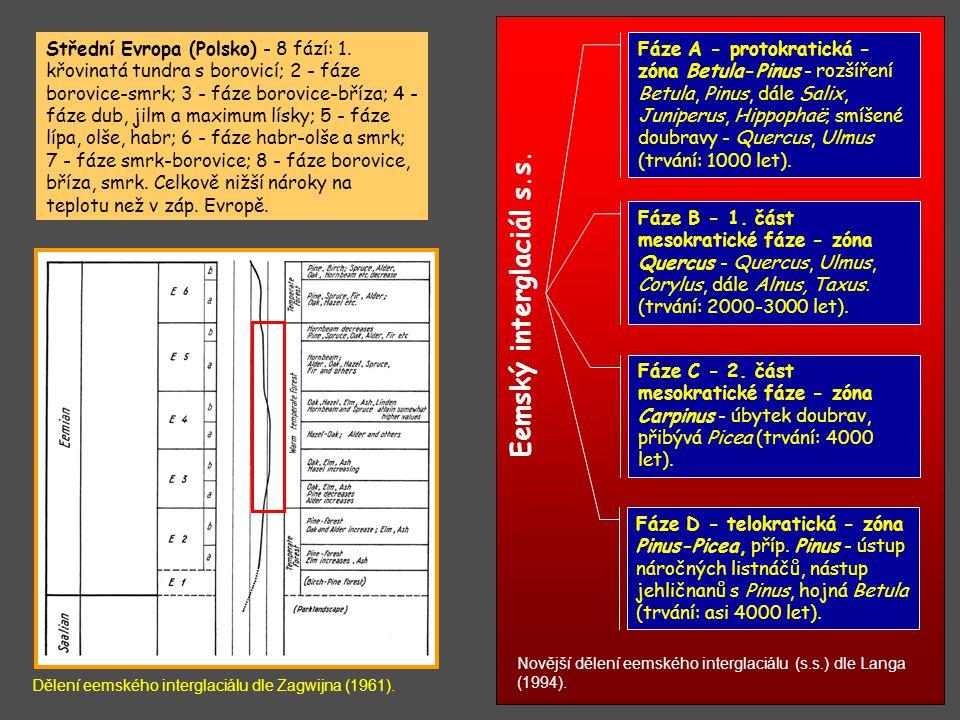 Novější dělení eemského interglaciálu (s.s.) dle Langa (1994). Střední Evropa (Polsko) - 8 fází: 1. křovinatá tundra s borovicí; 2 - fáze borovice-smr