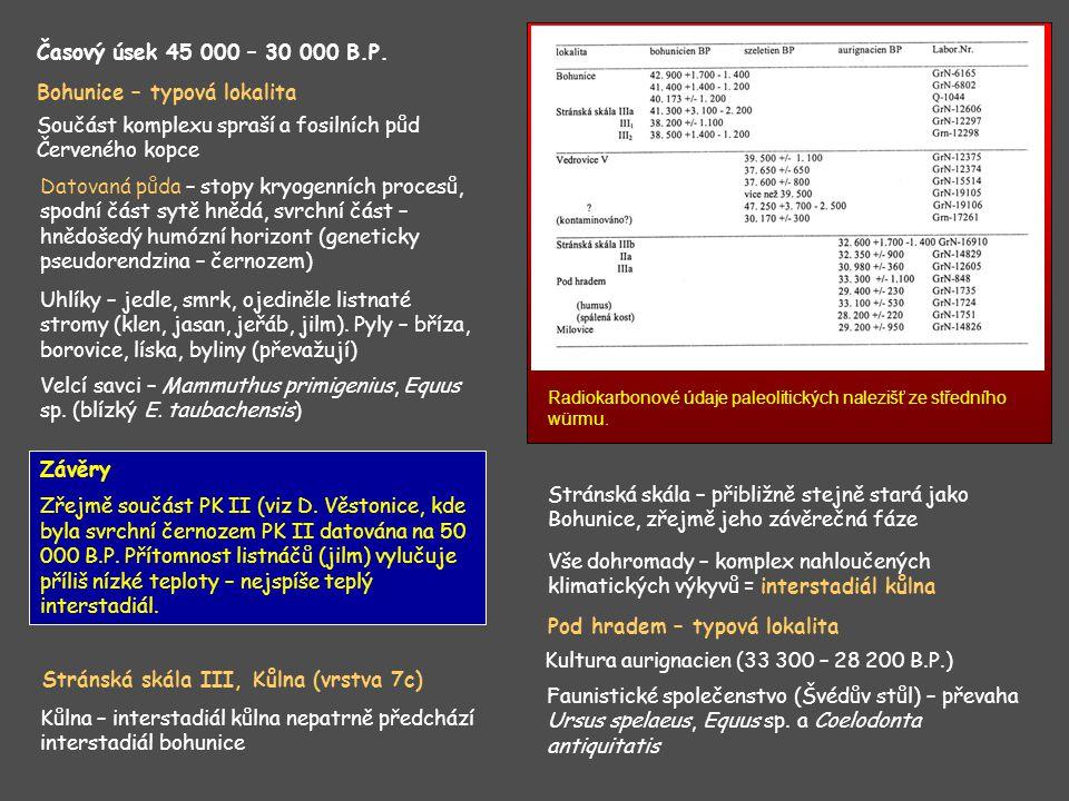 Závěry Zřejmě součást PK II (viz D. Věstonice, kde byla svrchní černozem PK II datována na 50 000 B.P. Přítomnost listnáčů (jilm) vylučuje příliš nízk