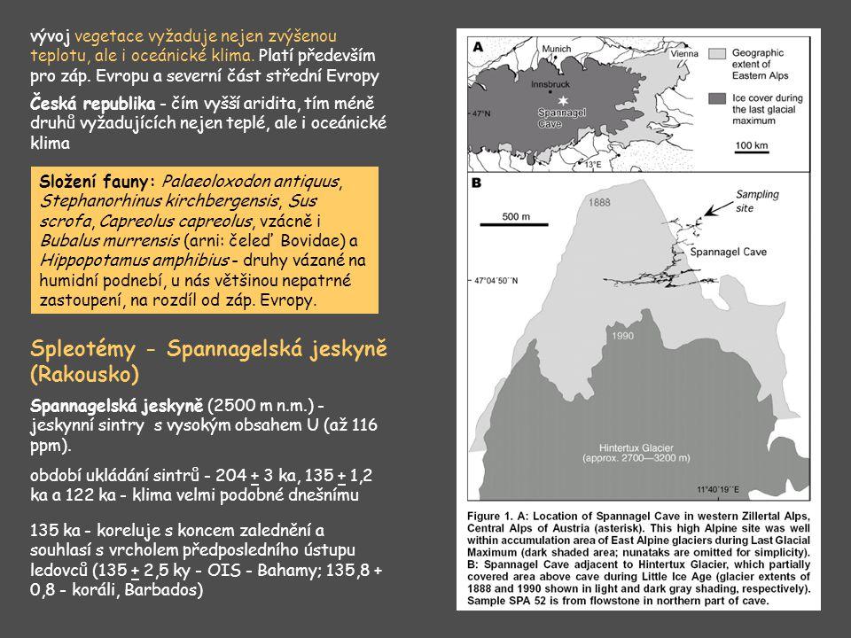Tilia sp.(lípa) – teplomil. dřevina, střední část interglaciálu Ulmus scabra (jilm drsný) – pahor.
