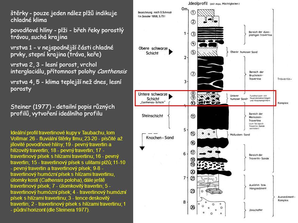 Steiner (1977) - detailní popis různých profilů, vytvoření ideálního profilu štěrky - pouze jeden nález plžů indikuje chladné klima povodňové hlíny -