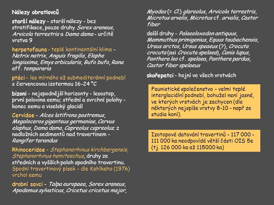 Standardní profil typové lokality Oerel (vrt OE 61).
