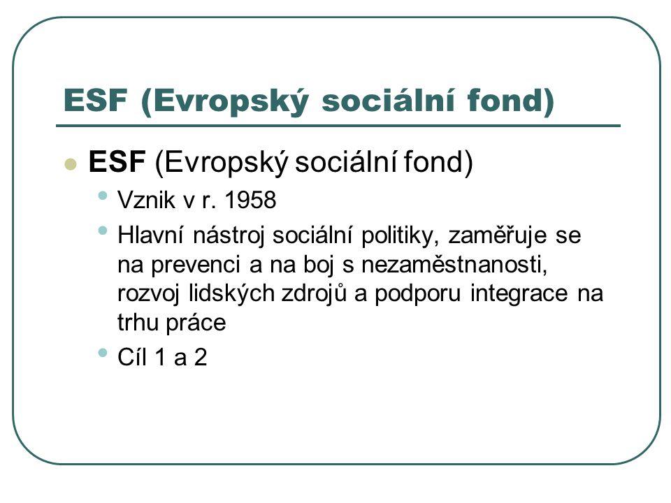 ESF (Evropský sociální fond) Vznik v r. 1958 Hlavní nástroj sociální politiky, zaměřuje se na prevenci a na boj s nezaměstnanosti, rozvoj lidských zdr