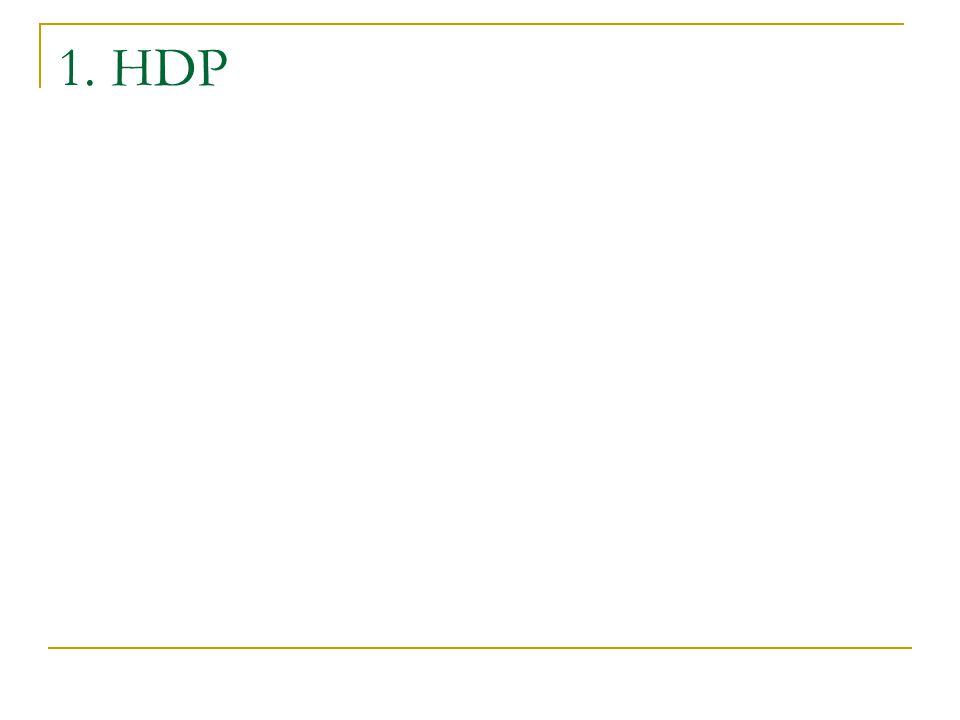 1. HDP
