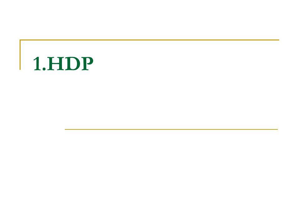 1.HDP