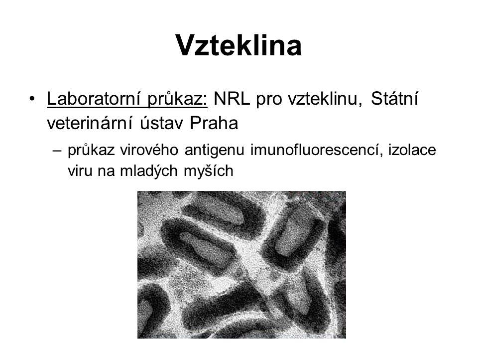 Vzteklina Laboratorní průkaz: NRL pro vzteklinu, Státní veterinární ústav Praha –průkaz virového antigenu imunofluorescencí, izolace viru na mladých myších