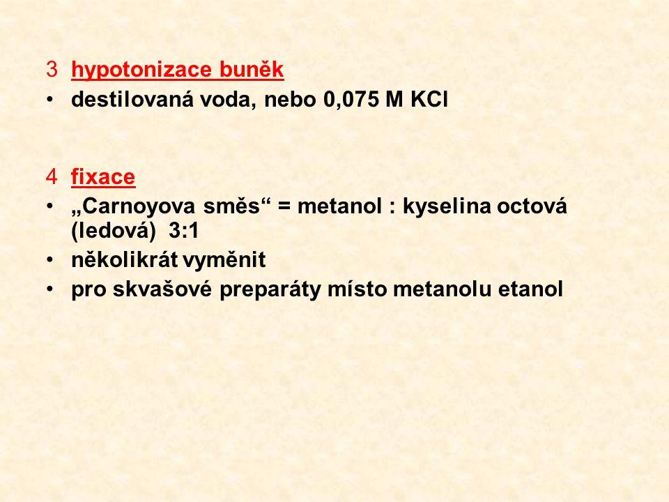 """3hypotonizace buněk destilovaná voda, nebo 0,075 M KCl 4fixace """"Carnoyova směs = metanol : kyselina octová (ledová) 3:1 několikrát vyměnit pro skvašové preparáty místo metanolu etanol"""