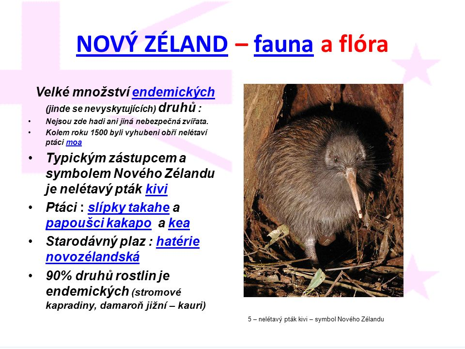 NOVÝ ZÉLANDNOVÝ ZÉLAND – fauna a flórafauna Velké množství endemických (jinde se nevyskytujících) druhů :endemických Nejsou zde hadi ani jiná nebezpeč