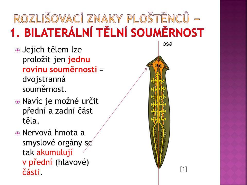  SMRŽ, J.; HORÁČEK, I.; ŠVÁTORA, M.Biologie živočichů pro gymnázia.