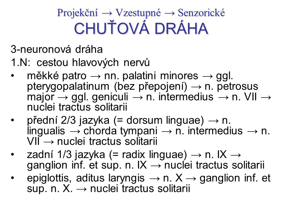 Projekční → Vzestupné → Senzorické CHUŤOVÁ DRÁHA 3-neuronová dráha 1.N: cestou hlavových nervů měkké patro → nn. palatini minores → ggl. pterygopalati