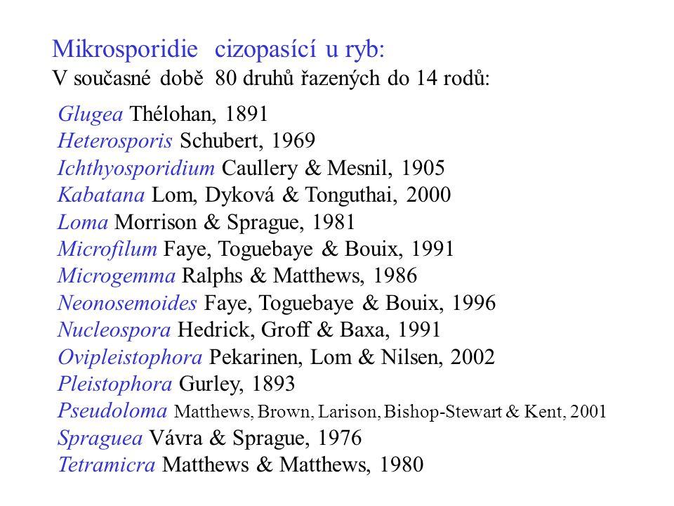 Mikrosporidie cizopasící u ryb: V současné době 80 druhů řazených do 14 rodů: Glugea Thélohan, 1891 Heterosporis Schubert, 1969 Ichthyosporidium Caullery & Mesnil, 1905 Kabatana Lom, Dyková & Tonguthai, 2000 Loma Morrison & Sprague, 1981 Microfilum Faye, Toguebaye & Bouix, 1991 Microgemma Ralphs & Matthews, 1986 Neonosemoides Faye, Toguebaye & Bouix, 1996 Nucleospora Hedrick, Groff & Baxa, 1991 Ovipleistophora Pekarinen, Lom & Nilsen, 2002 Pleistophora Gurley, 1893 Pseudoloma Matthews, Brown, Larison, Bishop-Stewart & Kent, 2001 Spraguea Vávra & Sprague, 1976 Tetramicra Matthews & Matthews, 1980