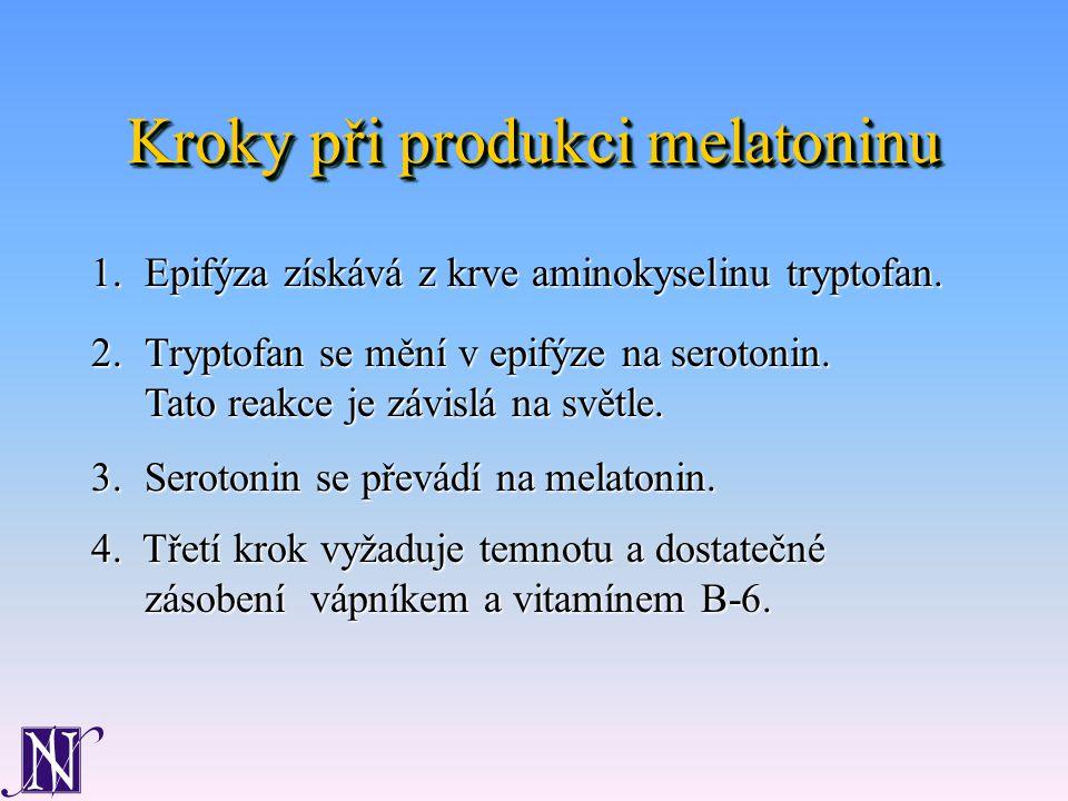 Kroky při produkci melatoninu 1.Epifýza získává z krve aminokyselinu tryptofan.