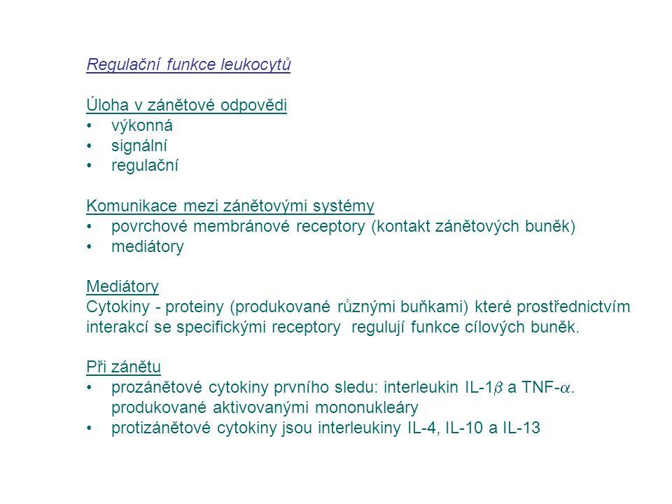 Regulační funkce leukocytů Úloha v zánětové odpovědi výkonná signální regulační Komunikace mezi zánětovými systémy povrchové membránové receptory (kon