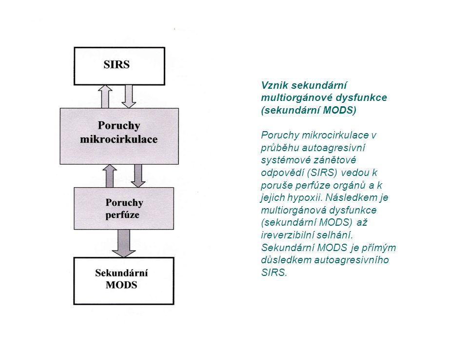 Vznik sekundární multiorgánové dysfunkce (sekundární MODS) Poruchy mikrocirkulace v průběhu autoagresivní systémové zánětové odpovědí (SIRS) vedou k p