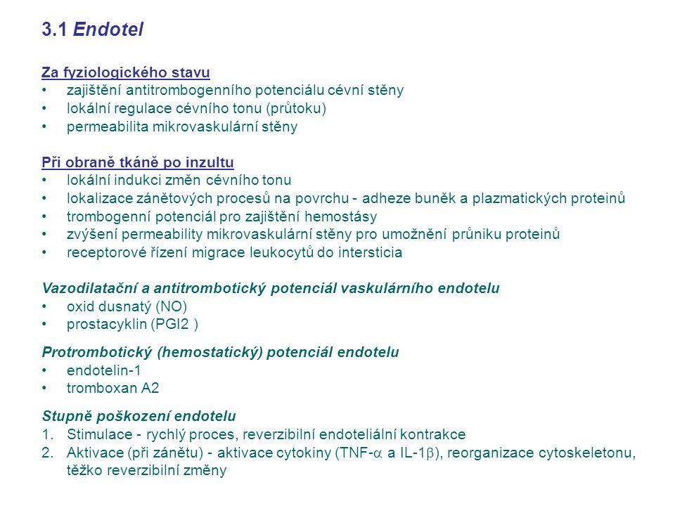 3.1 Endotel Za fyziologického stavu zajištění antitrombogenního potenciálu cévní stěny lokální regulace cévního tonu (průtoku) permeabilita mikrovasku