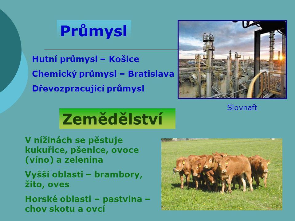 Průmysl Hutní průmysl – Košice Chemický průmysl – Bratislava Dřevozpracující průmysl Zemědělství V nížinách se pěstuje kukuřice, pšenice, ovoce (víno) a zelenina Vyšší oblasti – brambory, žito, oves Horské oblasti – pastvina – chov skotu a ovcí Slovnaft
