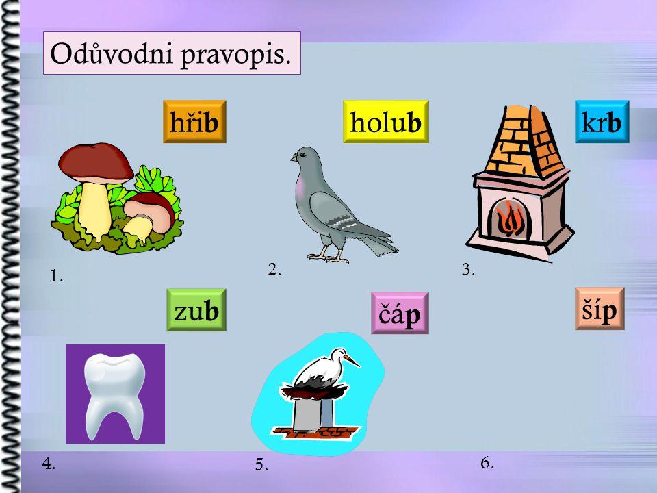 Od ů vodni pravopis. kr b čápčáp zu b hřibhřib holu b ší p 1. 2. 3. 4. 5. 6.