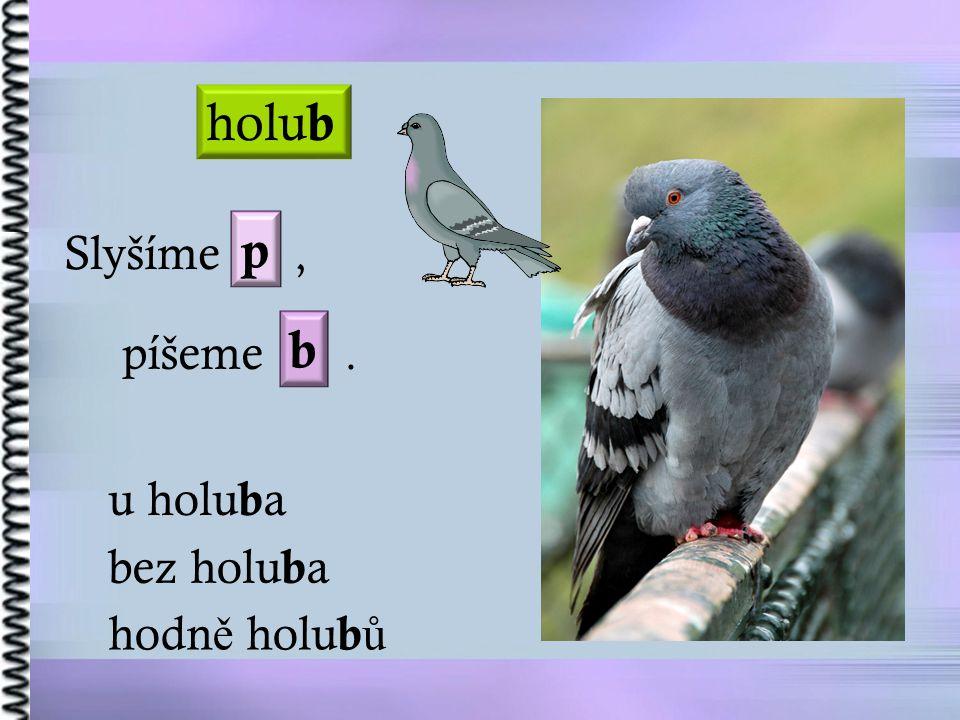 Slyšíme, píšeme. holu b u holu b a bez holu b a hodn ě holu b ů p b