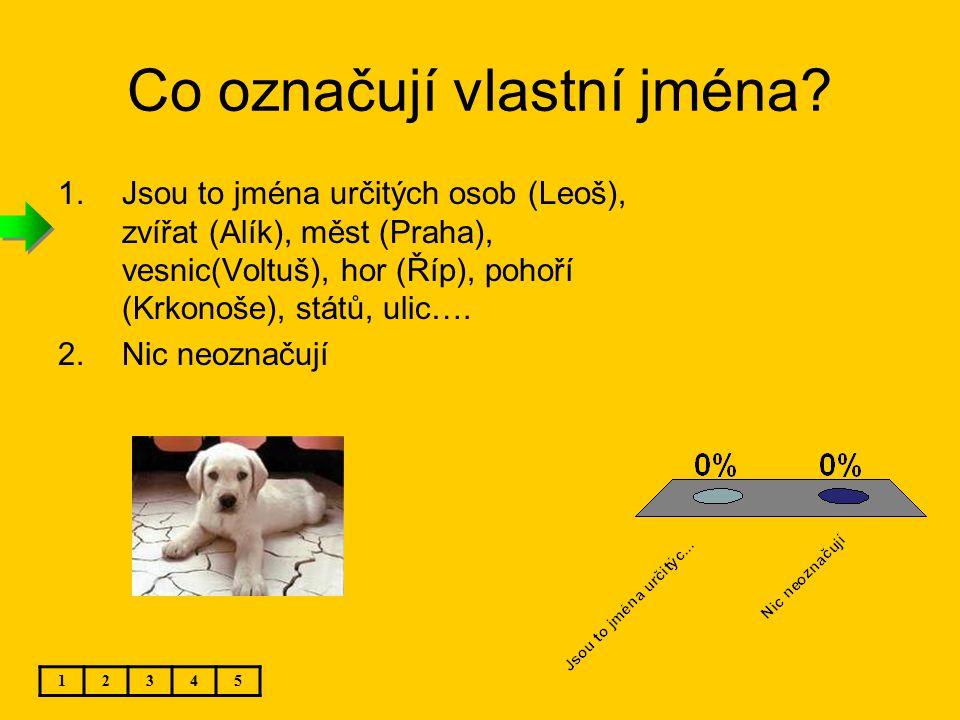 Co označují vlastní jména? 1.Jsou to jména určitých osob (Leoš), zvířat (Alík), měst (Praha), vesnic(Voltuš), hor (Říp), pohoří (Krkonoše), států, uli