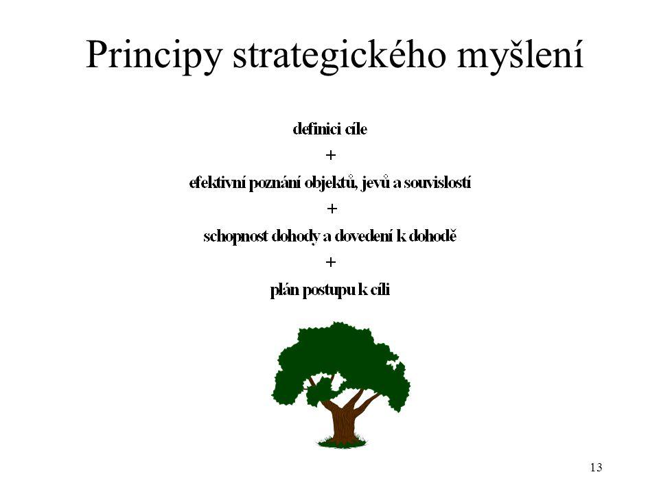 14 Co přinese strategická analýza.