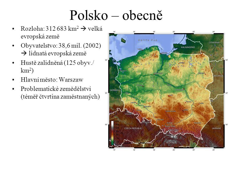 Polsko – obecně Rozloha: 312 683 km 2  velká evropská země Obyvatelstvo: 38,6 mil.