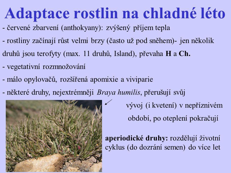 Regionální floristika Celkem asi 900 druhů, většinou cirkumpolárních.