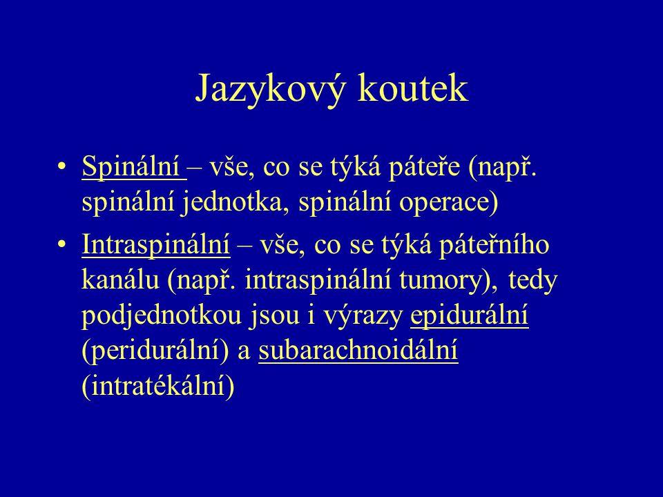 Jazykový koutek Spinální – vše, co se týká páteře (např. spinální jednotka, spinální operace) Intraspinální – vše, co se týká páteřního kanálu (např.
