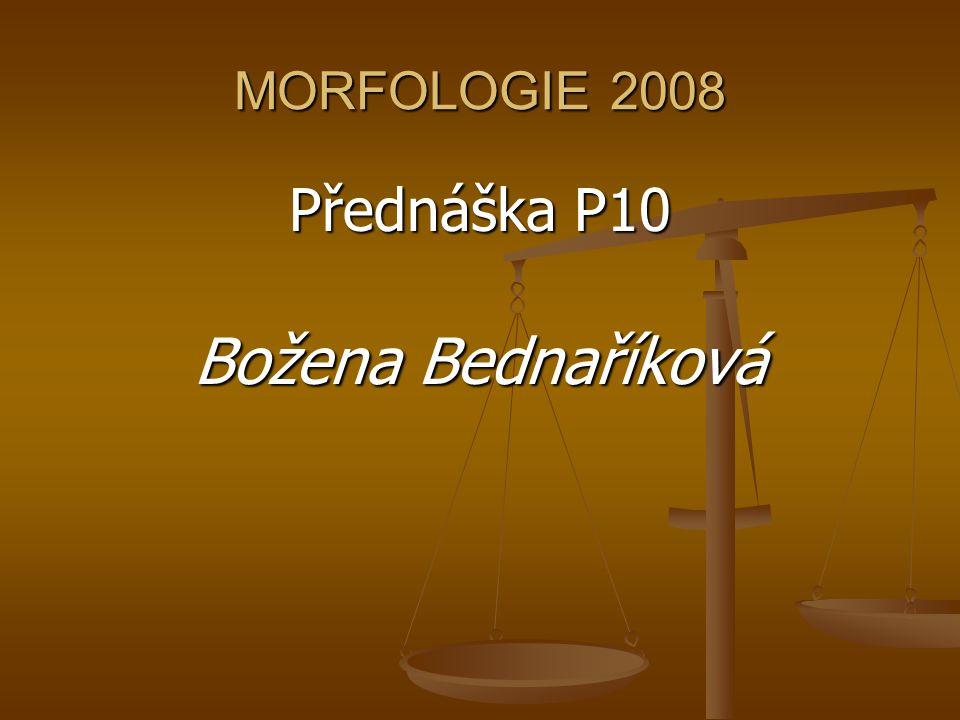 MORFOLOGIE 2008 Přednáška P10 Božena Bednaříková