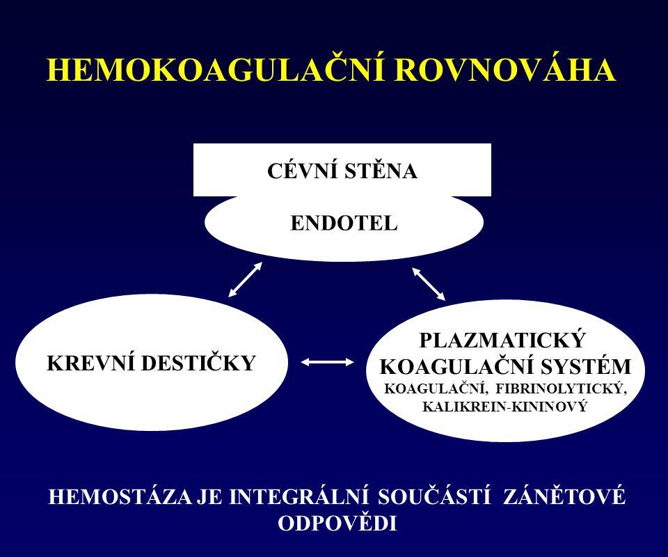 HEMOKOAGULAČNÍ ROVNOVÁHA KREVNÍ DESTIČKY PLAZMATICKÝ KOAGULAČNÍ SYSTÉM KOAGULAČNÍ, FIBRINOLYTICKÝ, KALIKREIN-KININOVÝ CÉVNÍ STĚNA ENDOTEL HEMOSTÁZA JE