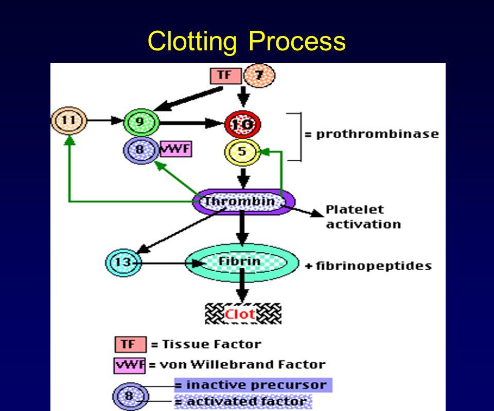 Clotting Process