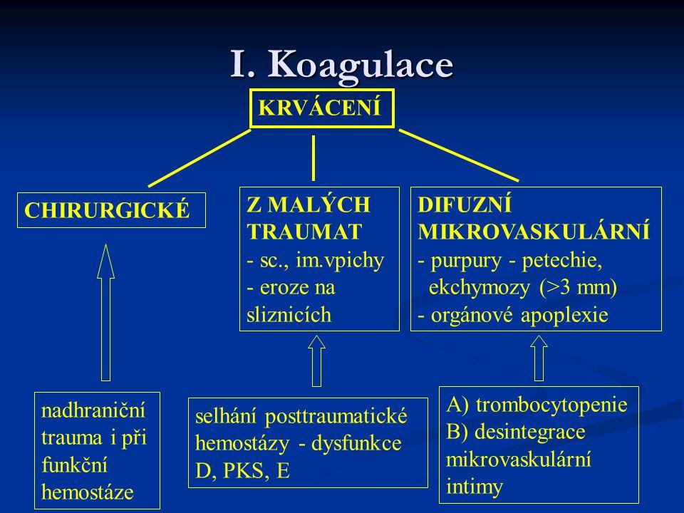 I. Koagulace KRVÁCENÍ CHIRURGICKÉ Z MALÝCH TRAUMAT - sc., im.vpichy - eroze na sliznicích DIFUZNÍ MIKROVASKULÁRNÍ - purpury - petechie, ekchymozy (>3