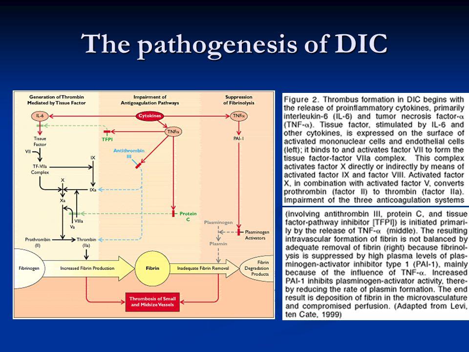 The pathogenesis of DIC