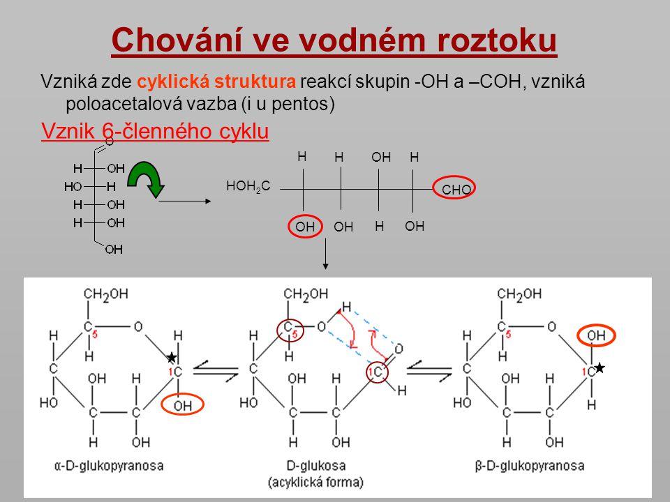 Chování ve vodném roztoku Vzniká zde cyklická struktura reakcí skupin -OH a –COH, vzniká poloacetalová vazba (i u pentos) CHO OHH HOH 2 C H HOHH Vznik