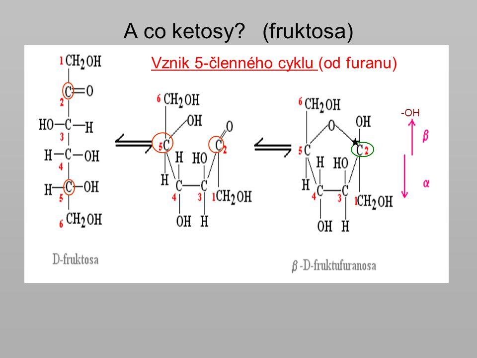 A co ketosy? (fruktosa) -OH Vznik 5-členného cyklu (od furanu)