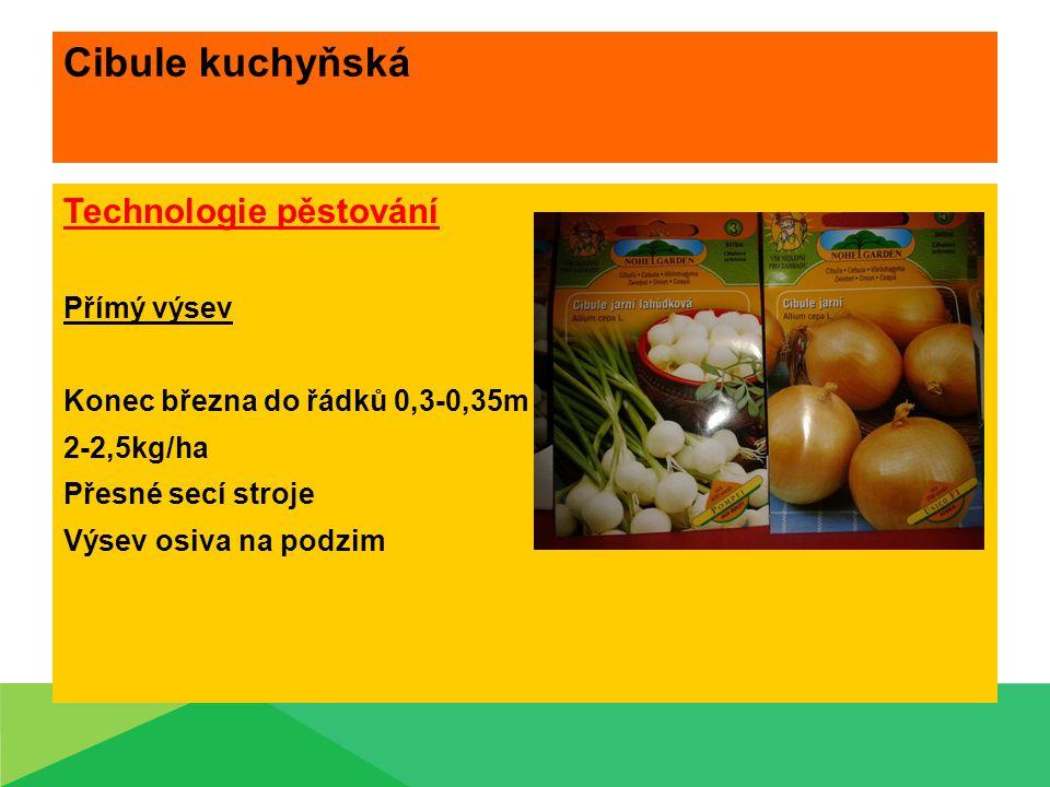 Cibule kuchyňská Technologie pěstování Přímý výsev Konec března do řádků 0,3-0,35m 2-2,5kg/ha Přesné secí stroje Výsev osiva na podzim