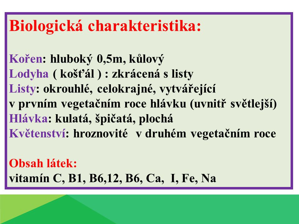 Biologická charakteristika: Kořen: hluboký 0,5m, kůlový Lodyha ( košťál ) : zkrácená s listy Listy: okrouhlé, celokrajné, vytvářející v prvním vegetač