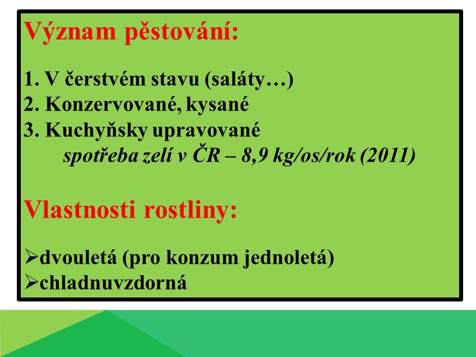 Význam pěstování: 1. V čerstvém stavu (saláty…) 2. Konzervované, kysané 3. Kuchyňsky upravované spotřeba zelí v ČR – 8,9 kg/os/rok (2011) Vlastnosti r