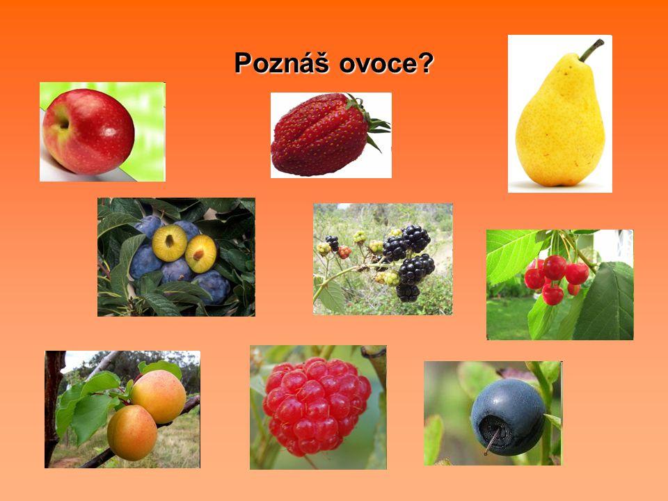 Poznáš i exotické ovoce?