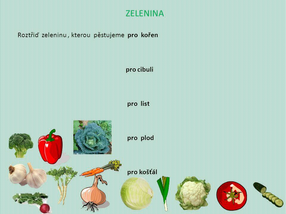 ZELENINA Roztřiď zeleninu, kterou pěstujeme pro kořen pro cibuli pro list pro plod pro košťál