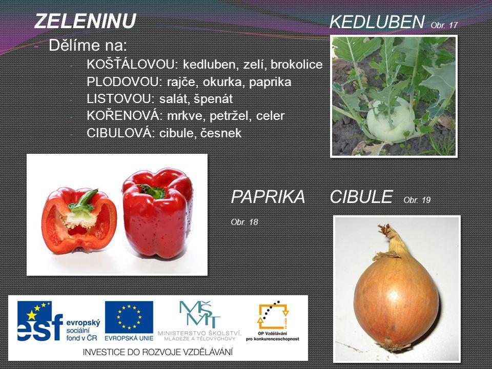 ZELENINU KEDLUBEN Obr. 17 - Dělíme na: - KOŠŤÁLOVOU: kedluben, zelí, brokolice - PLODOVOU: rajče, okurka, paprika - LISTOVOU: salát, špenát - KOŘENOVÁ