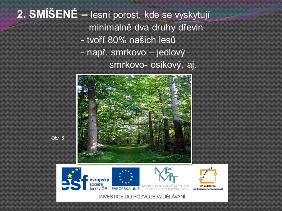 2. SMÍŠENÉ – lesní porost, kde se vyskytují minimálně dva druhy dřevin - tvoří 80% našich lesů - např. smrkovo – jedlový smrkovo- osikový, aj. Obr. 6