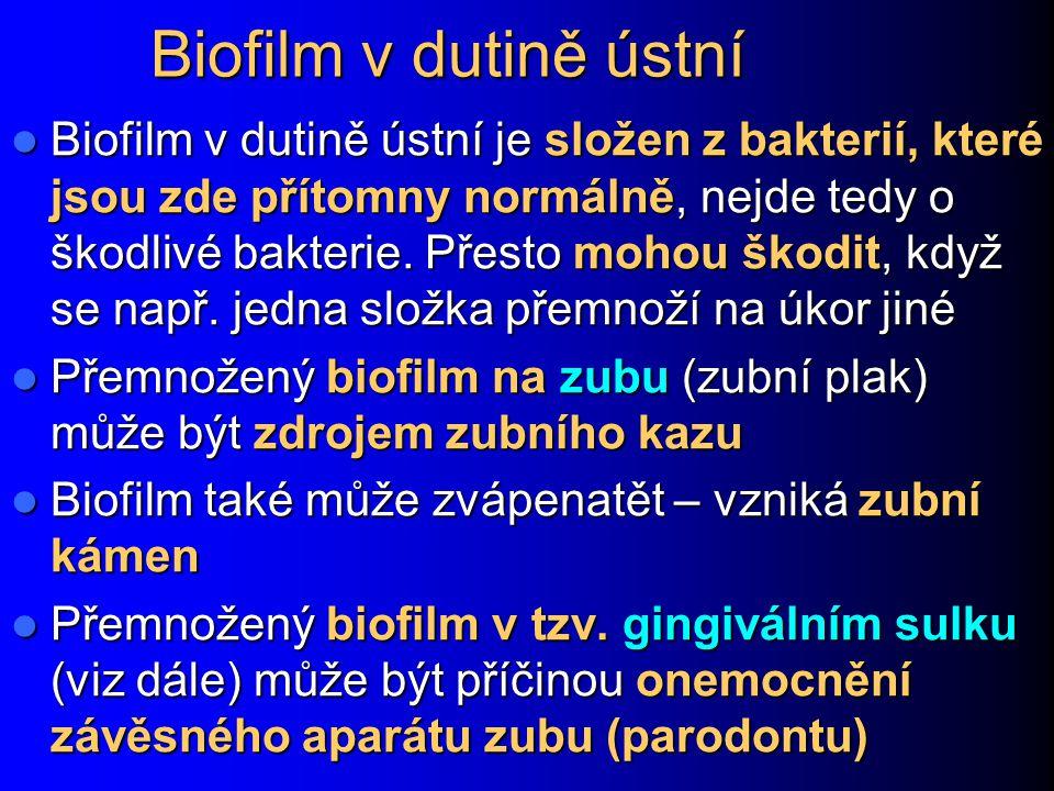 Biofilm v dutině ústní Biofilm v dutině ústní je složen z bakterií, které jsou zde přítomny normálně, nejde tedy o škodlivé bakterie. Přesto mohou ško
