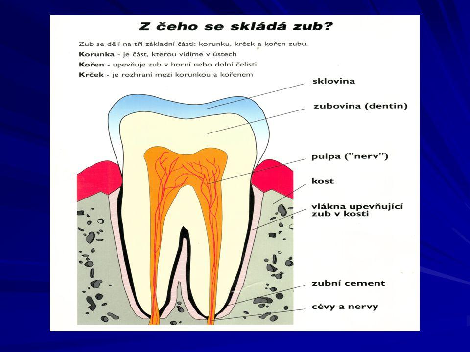 Parodontitida Předstupeň - chronický zánět dásní 1/3 obyvatel mezi 35-40 rokem,  s věkem Celkově 85 % populace  množství cementu, likvidace závěsného aparátu zubu, rozvolnění gingivodentálního uzávěru, neustálé rozšiřování gingiválního kanálku do parodontálního chobotu, průnik zbytků potravy a baktétií - progrese zánětu periodontia, resobce přilehlé kosti, obnažení zubního krčku, viklavost a vypadávání zubu
