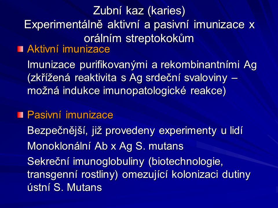 Zubní kaz (karies) Experimentálně aktivní a pasivní imunizace x orálním streptokokům Aktivní imunizace Imunizace purifikovanými a rekombinantními Ag (