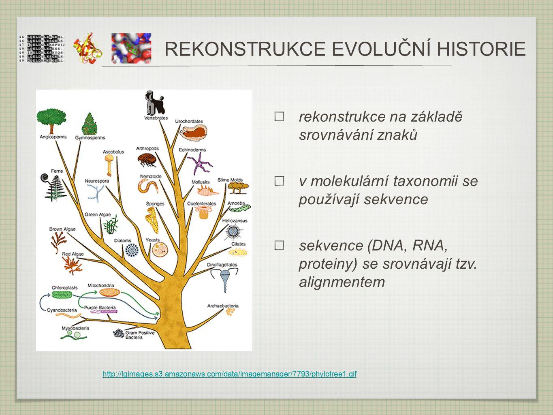 http://lgimages.s3.amazonaws.com/data/imagemanager/7793/phylotree1.gif REKONSTRUKCE EVOLUČNÍ HISTORIE rekonstrukce na základě srovnávání znaků v molek