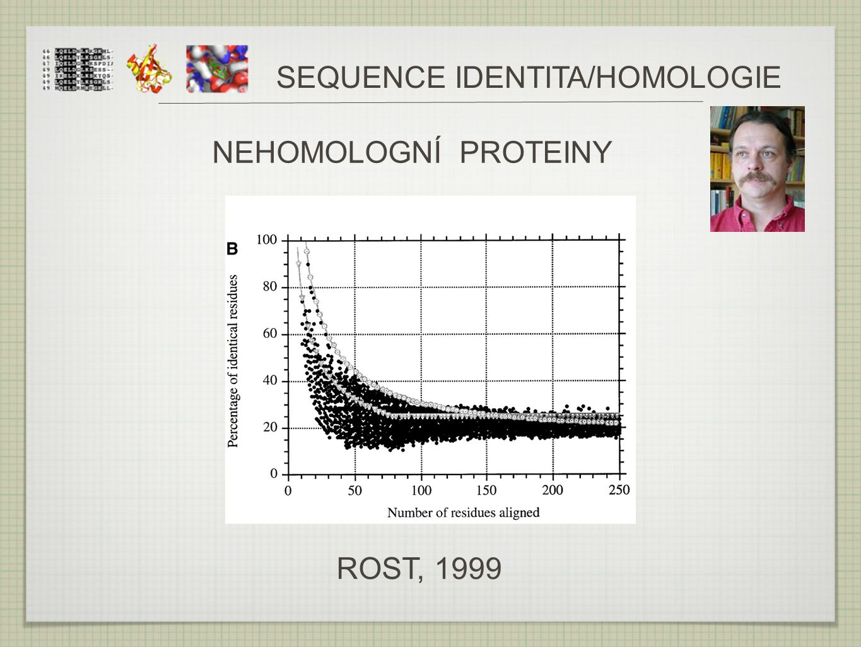 ROST, 1999 SEQUENCE IDENTITA/HOMOLOGIE NEHOMOLOGNÍ PROTEINY